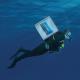netuno-pescados-delivery